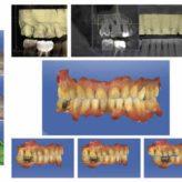 Das Dynamische Digitale Modell repräsentiert den ganzen Patienten