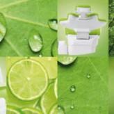 KaVo Greenery Edition – alles im grünen Bereich